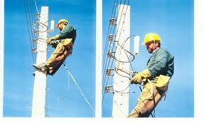 خازن گذاری در شبکه های توزیع