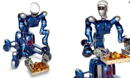 مدلسازی دینامیکی بازوی کشسان ربات