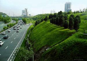 معماری فضای سبز