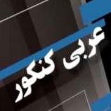 کاملترین جزوه کنکوری درس عربی