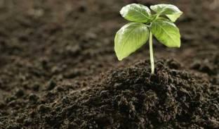 کودها و تقویت کننده های خاک