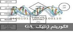 مسیریابی در شبکه پویا با الگوریتم موریانه ای و ژنتیک