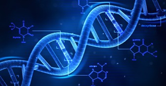 DNA و ژنوم