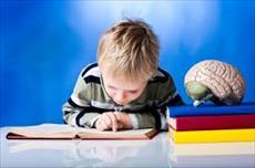 تاثیر تشویق در افزایش یادگیری