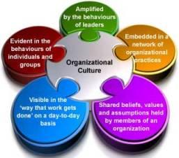 نقش فرهنگ سازمانی در نوآوری